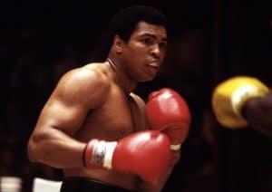 idézetek a kitartásról sport 100 motivációs idézet: A legjobb motivációs idézetek egy helyen
